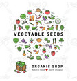 vegetable seeds banner organic shop natural vector image vector image