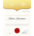 Design Certificate Certificate details gold vector image vector image