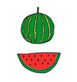 draw watermelon icon vector image