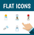 flat icon sodium set of sodium spicy saltshaker vector image