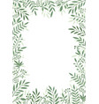 frame plants and leaves vector image vector image