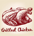 grilled chicken turkey meat barbecue hand drawn vector image
