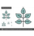 Plant growing line icon vector image vector image