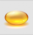 transparent yellow capsule of drug vitamin or vector image