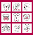 collection with cute dogs set in sketch cartoon vector image vector image