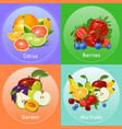 colourful fruits banners set vector image vector image