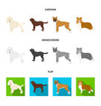 dog breeds cartoonflatmonochrome icons in set vector image vector image
