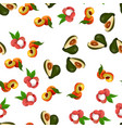 exotic tropical fruit vector image vector image
