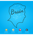 Brain infographic on blue background vector image