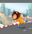 a lion roller skate in urban town vector image vector image