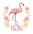 flamingo isolated on background pink flamingo vector image