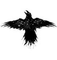 flying eagle night vector image vector image