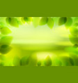 fresh green leaves and blurred summer nature vector image