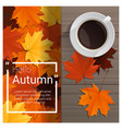 hello autumn background with cup of coffee vector image