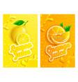 set fresh lemon and orange juices backgrounds vector image