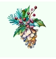 Watercolor fir-cone with fir branches and vector image