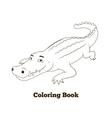 Coloring book crocodile african savannah animal vector image
