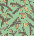 Fir pine cone seamless pattern vector image vector image