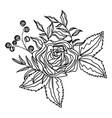 flower petals drawing vector image vector image
