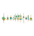 green tropical macrame house plant set isolated vector image