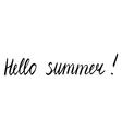 hello summer vector image vector image