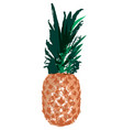 single sketch pineapple vector image vector image