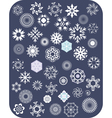 Snowflake White Set vector image