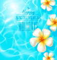 Tropical frangipani flowers floating on clear blue vector