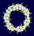 wreath white camomiles on blue background vector image