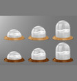 christmas snow globes on wooden base vector image