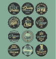 premium quality retro badges collection blue vector image