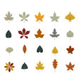 set colorful autumn leaves simple cartoon flat vector image