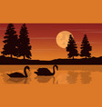 silhouette of swan beauty scenery vector image vector image