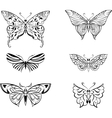 stylized butterfly set vector image vector image