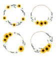yellow sunflower wild flower and eucalyptus leaf vector image vector image