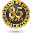 85 years experience gold label vector image