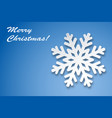 christmas greeting card winter snowflake vector image vector image