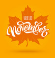 hello november modern brush calligraphy with vector image