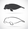image an dugong vector image