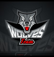 logo template with wolf head vector image