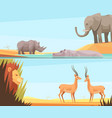 african wild banners set vector image vector image