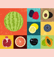 collection of pop art grunge retro fruits poster vector image vector image