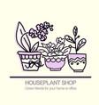 cute pots with blloming housplants hand drawn vector image vector image