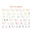 outline colorful linear web icon set - fruit amp vector image