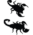 scorpions vector image vector image