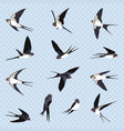 set of many simple swallows vector image vector image