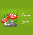 amanita on a green background banner for the site vector image