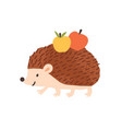 childish cute hedgehog carry apples funny urchin vector image