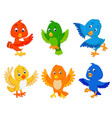 collection birds with the different color vector image vector image