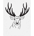 deer head isolated on white background vector image